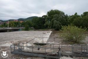 20130603_31009_Hochwasser_Paradieswehr_Waserzeichen