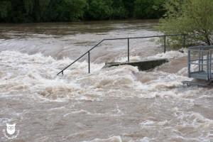 20130603_31031_Hochwasser_Paradieswehr_Wasserzeichen