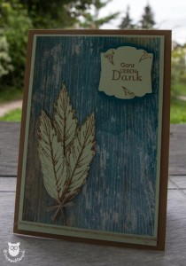 20130914_35192_Stampin_Up_Sour_Gently_Falling (1 von 1)