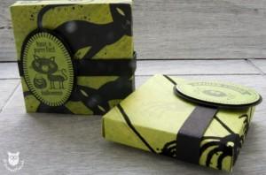 20131013_35470_Stampin_Up_Envelope_Box