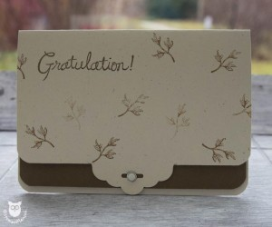 20140119_1006_Stampin_Up_Tag_Topper_Punch_Karte
