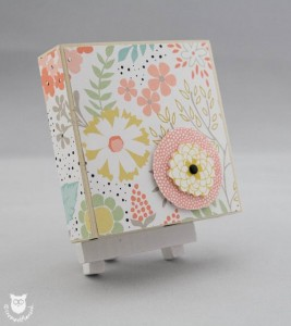 20140205_1170_Stampin_Up_Box