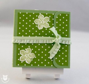 20140309_11642_Stampin_Up_Minialbum