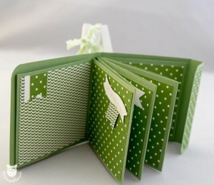 20140309_11645_Stampin_Up_Minialbum