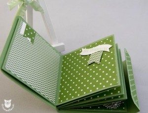 20140309_11647_Stampin_Up_Minialbum
